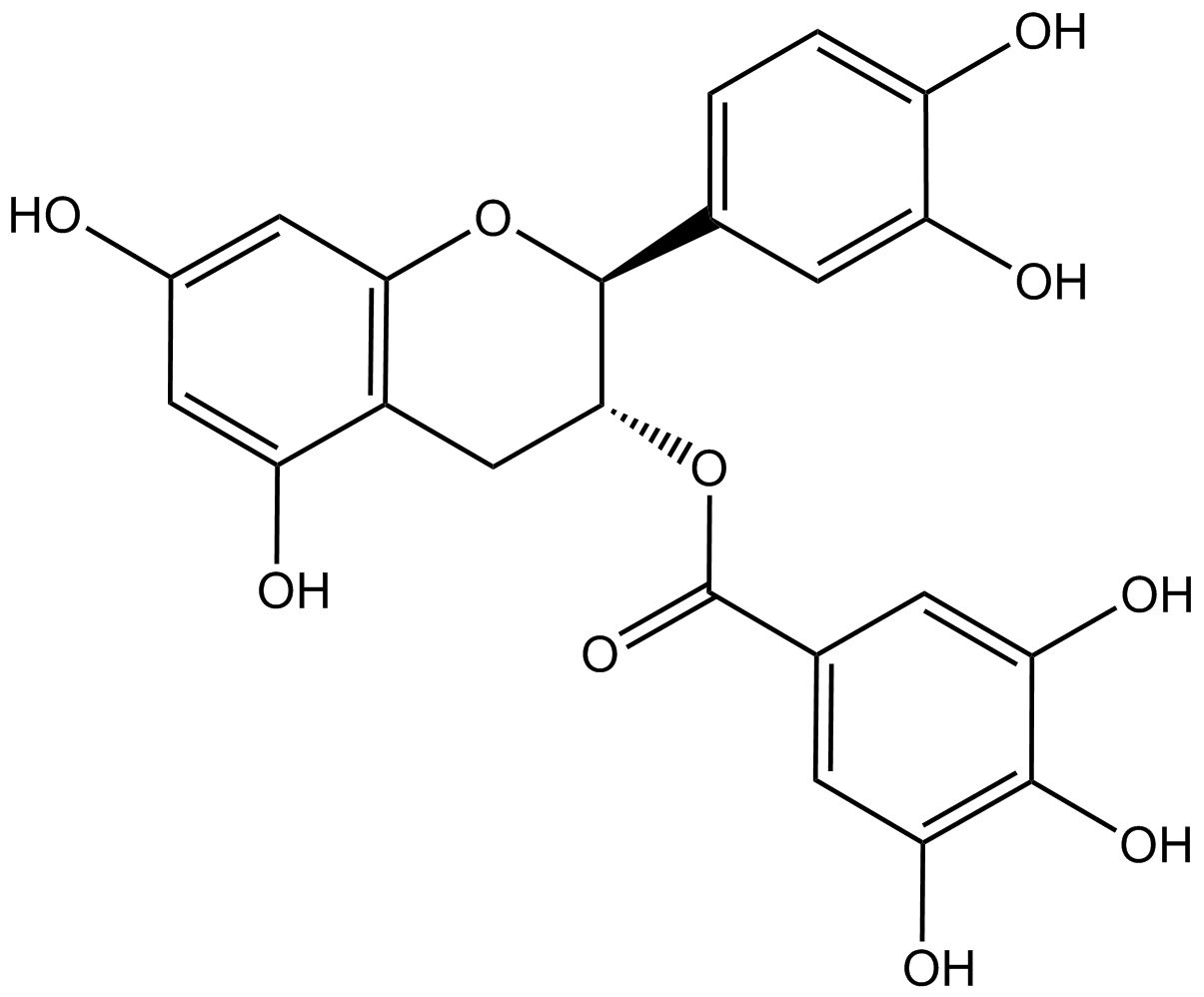 (-)-Catechin 3-gallate phyproof® Reference Substance | PhytoLab